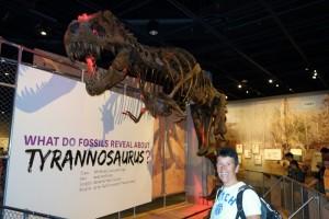 De Tyrannosaurus was groot