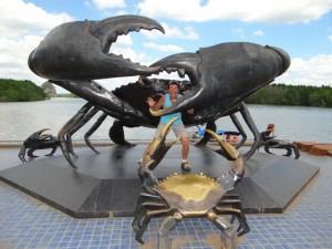 De Krabben van Krabi