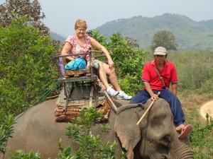 Rieta op de olifant