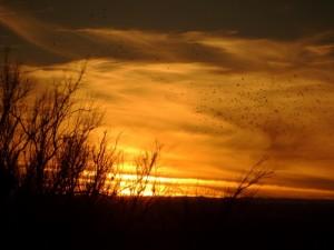 Zonsondergang bij Bottomless State Park