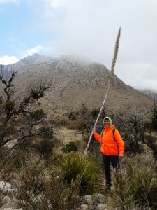 Koud in de Guadalupe Mountains