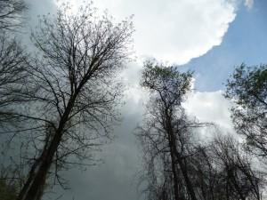 Blauwe lucht en dreigende wolken