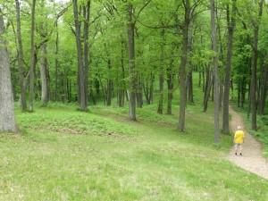 Bijzondere heuvels in Effigy Mounds