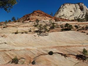 Gladde rotsen markeren de weg