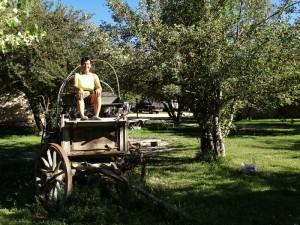 De Chuckwagon in  de appel boomgaard
