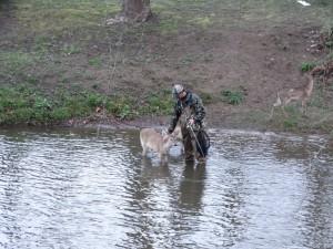 De herten zijn niet bang voor de vissers