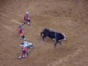 Bull Riding, minimal 8 sec. blijven zitten om te scoren