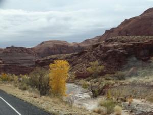 Herfstkleuren onderweg